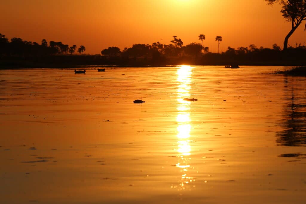 Rich golden and orange tropical sunset reflected in water
